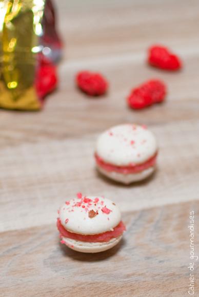 Macarons aux Pralines - Cahier de gourmandises