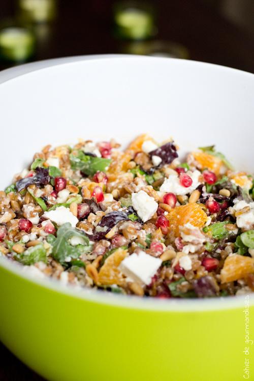 Salade Epeautre Grenade - Cahier de gourmandises