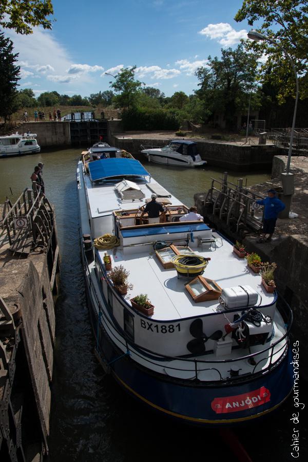 Canal du Midi | Cahier de gourmandises