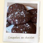 Les craquelins au chocolat