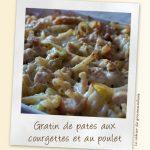Gratins de pâtes aux courgettes et poulet