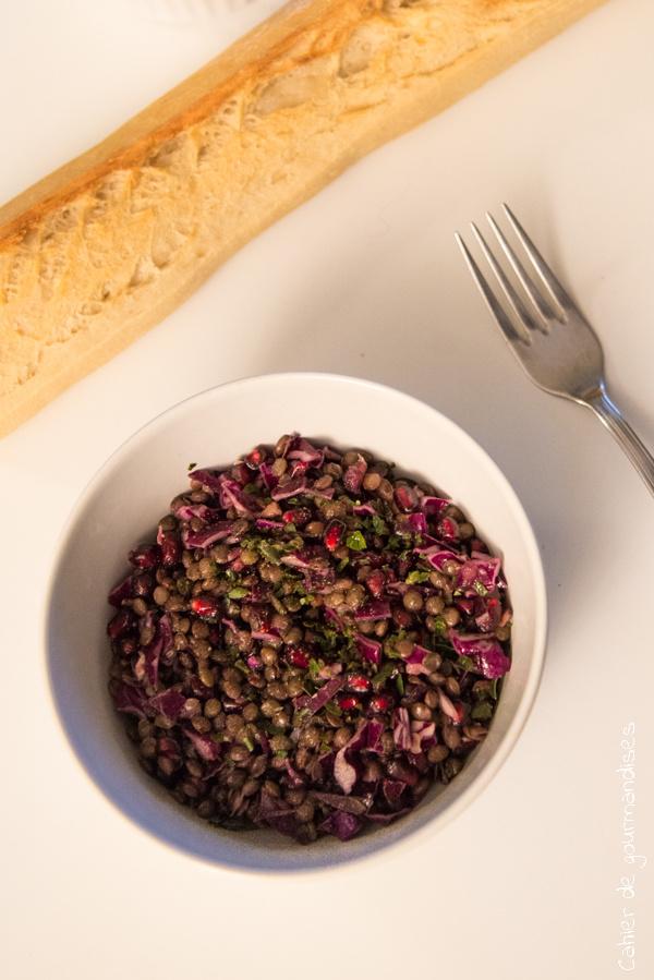 Salade de lentilles chou rouge grenade | Cahier de gourmandises