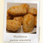 Madeleines jambon mimolette