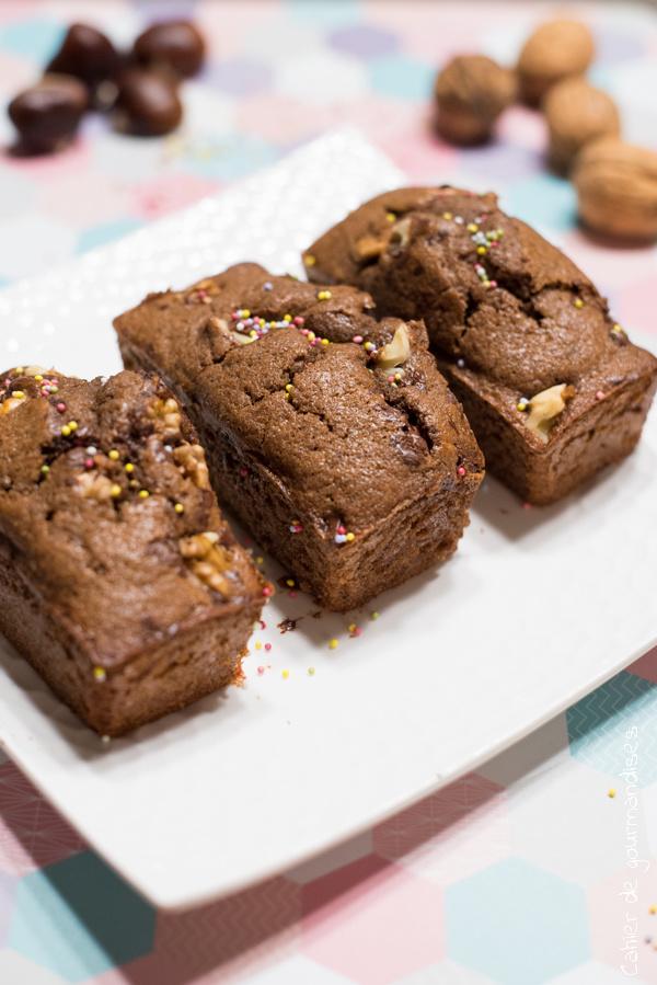 Mini-cakes au chocolat | Cahier de gourmandises