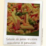 Salade de pâtes tricolore à la mimolette et parmesan