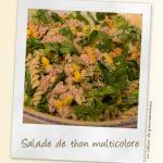 Salade de thon multicolore